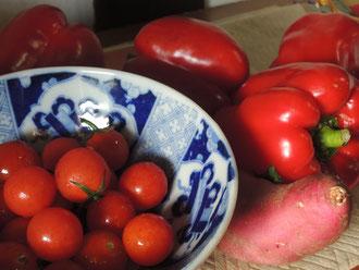 名残の夏野菜〜赤!