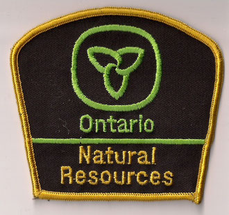 Ontario - Natural Resources  (Fond brun / Brown background)  (Gros modèle / Big size model)  (Ancien / Obsolete)  (Usagé / Used)  1x
