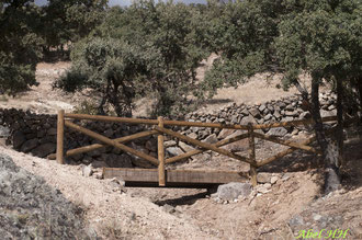 Pasarela de madera ubicada en el transcurso de la senda