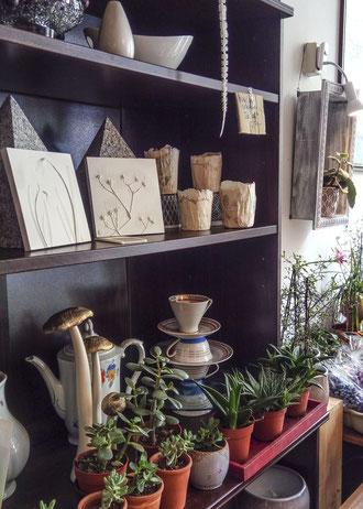 Cacaoblüte, Plagwitz, Leipzig, Ricarda Mädler, Schneeglöckchen
