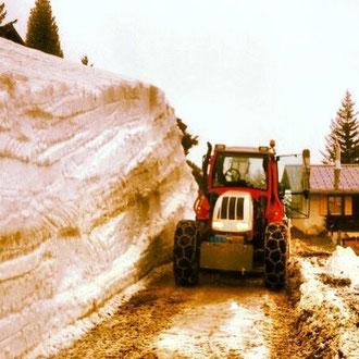 Tracteur Steyr - 2013