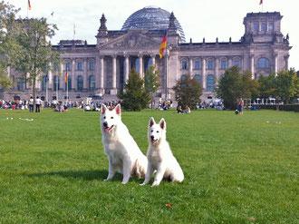 vorm Reichstag