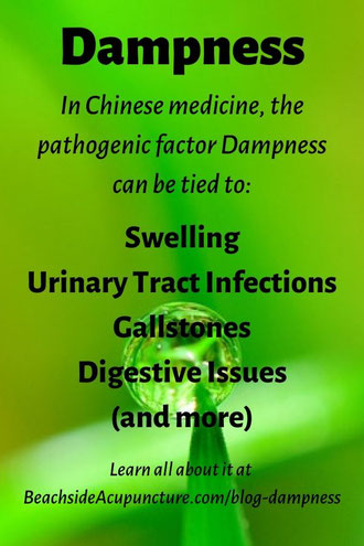 In TCM, the pathogen Dampness can be tied to swelling, UTI, gallstones, digestive issues, and more.
