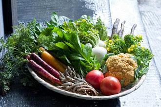 敢闘賞(コース毎全3点) 野菜セット 「 伊都安蔵里 」 提供