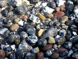 Auch aus Steinen die einem in den Weg gelegt werden kann man etwas schönes bauen.