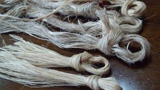 束ねた藤の繊維
