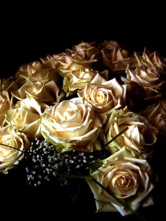 Rosen die Posen