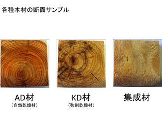 各種木材の断面サンプル