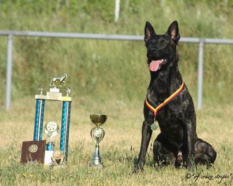 Flash mit seinen Pokalen nach einem erfolgreichen Wochenende!!!