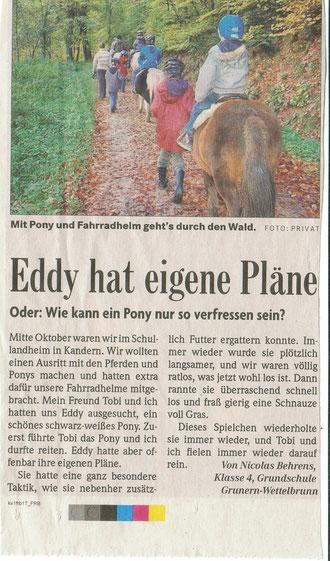 Badische Zeitung Dez 2010