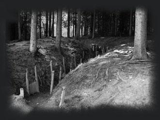 Laufgraben Verdun 2007