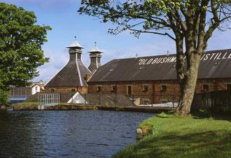Glentaste Bushmills Distillery