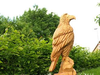 Adler aus Lärche