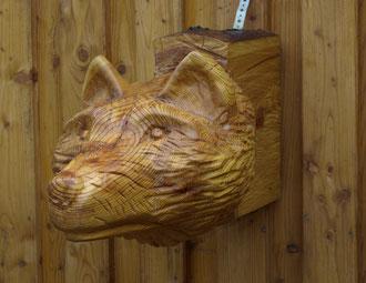 Sparrenkopf Wolf