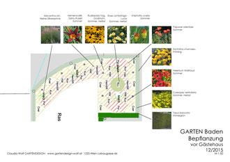 Bepflanzungsplan Gartenplanung