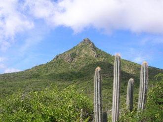 Sehenswürdigkeiten - Christoffelberg Urlaub auf Curacao