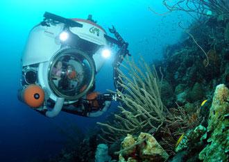 Sehenswürdigkeiten - Substation   - Urlaub auf Curacao