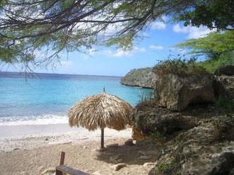 Strände - Playa Jeremy  - Urlaub auf Curacao