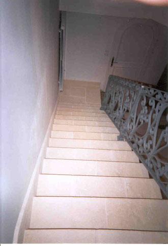 Dallage escalier fausse pierre
