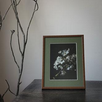Kunstdruck einer gerahmten Fotografie zeigt weiße Kirschblueten