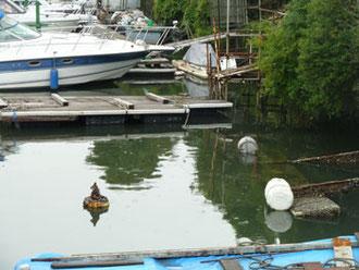 横浜市神奈川区・千鳥橋付近のボート置き場
