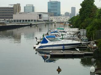 横浜市神奈川区・千鳥橋付近と遠景