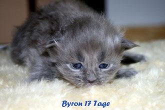 Byron 17 Tage