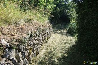 N°10/ Murettes de pierres sèches bien dégagées et buis taillés pour se mettre dans l'ambiance de la petite Provence de la Vallée d'Aspe