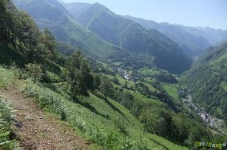 N°41/ Le Chemin Panoramique domine les villages de Cette et d'Eygun : fauchage soigné dans la fougeraie