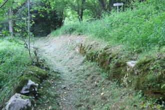 N°21/ En remontant encore plus haut, le Chemin de Labayas sous la jonction du Chemin de Ségnaté, fauchage correct de l'ONF