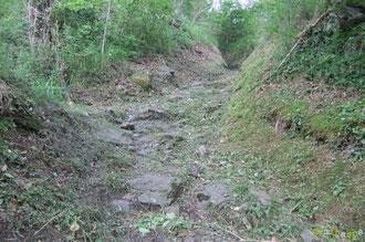 N°42/ Le chemin pavé montant sous la Ferme Larrouy signe l'époque des chemins muletiers ; l'idéal serait de remettre à neuf le pavage et de curer les rigoles ...