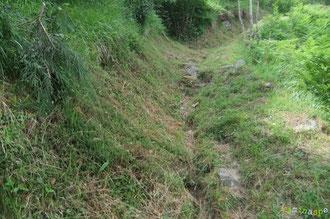 N°42/ En remontant au Col de Rédo, le fauchage n'est toujours pas raz, ce qui camouflera bientôt les creux du chemin pour les randonneurs ...