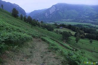 N°24/ Depuis le haut du Plateau de Soudious, un chemin fauché raz et large : un plaisir pour les randonneurs et les vététistes aptes pour une piste rouge !
