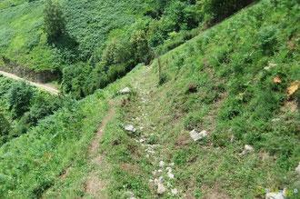 N°22/ Le sentier du bas entre les lacets de la piste montant vers le bois de Chimits : fauchage rattrapé hors du dévers, dans l'assiette véritable du chemin !