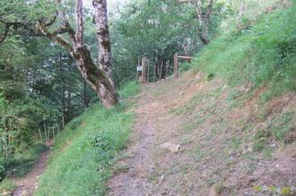 N°20/ Le Chemin des Jaupins venant d'Aydius est parfaitement fauché ; veillez à refermer les barrières sur son passage à cause des chevaux !