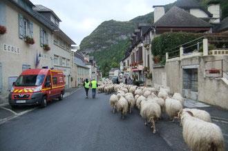Urdos, tel qu'on aime le voir, encombré de brebis et de touristes.