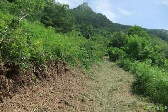 N°43/ Fauchage très soigné large et raz sur le bas du Chemin de Beloute au retour de la boucle Mâture-Aras ; le haut sera fait plus tard.