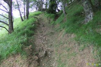 N°3 Le Chemin de Bosdapous sous les Granges Castéra : fauché large et raz