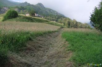 N°42/ Le chemin monte à travers le pré sous la Ferme Larrouy : il est fauché large et raz, respectant l'esprit paysan ...