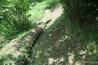 N°43/ Fauchage dans la fougeraie du bas de Beloute : il met parfaitement en évidence le creux et les côtés du chemin.