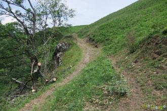 N°12/ Un chablis dégagé à Pirait, juste après un passage rocheux et la Fontaine de la Curette : les séquelles réparées de la tempête Xynthia !
