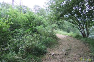N°3/ Le retour des Chemins du Quartier Bosdapous par le Calvaire, à l'approche de la ligne haute tension : rasé sur 2 m de large