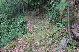 N°42/ Un effondrement du chemin dans le Bois de Busteigts : une murette pourait être reconstruite en bordure avec des pierres éboulées sur le chemin 20 m plus loin, en travaillant à la main, ne rien perdre !