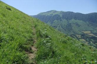 N°7/ Le sentier se poursuit de façon évidente vers les Cols de Saudarie et de Laünde par des pelouses redressées
