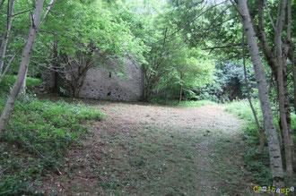 N°42/ La Borde de Claverie dans le fond du Bois de Busteigt : d'anciennes prairies gagnées par le bois reconquises symboliquement sur quelques ares ...