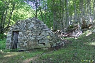 N°41/ La Cabane neuve de Sabas à l'écart dans le bois ravagée par la Tempête Xynthia : appel aux bénévoles pour remonter le toit !