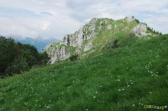 N°22/ Voici l'herbe qu'attendent impatiemment les brebis vers le Pas d'Ilhurté ; les Mailhs d'Ilhurté avec une curieuse chandelle à gauche du sommet !