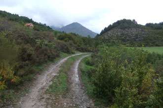 Garrigue entre Siresa et Hecho