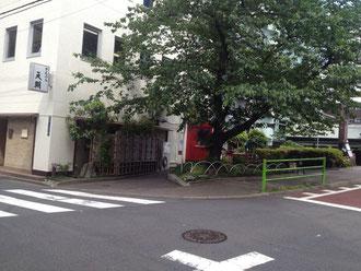 桜の木の方へ