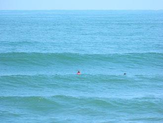 Good wave!
